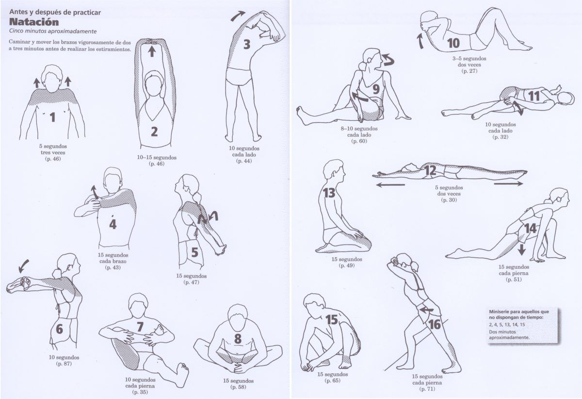 ejercicios para estirar antes y después de nadar