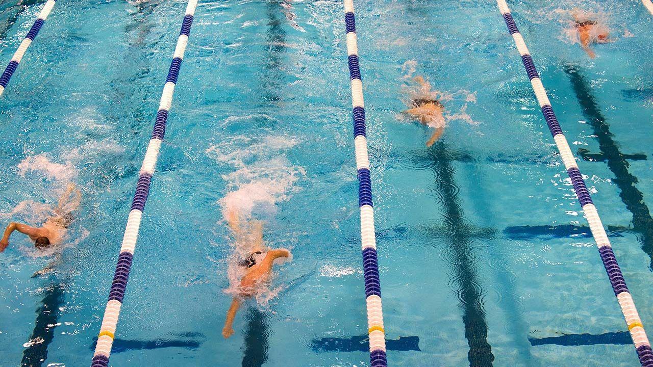 nadadores en una pileta